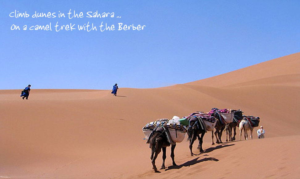 Climb dunes in the Sahara... On a camel trek with the Berber